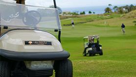 Best Golf Course - Green Monkey Sandy Lane